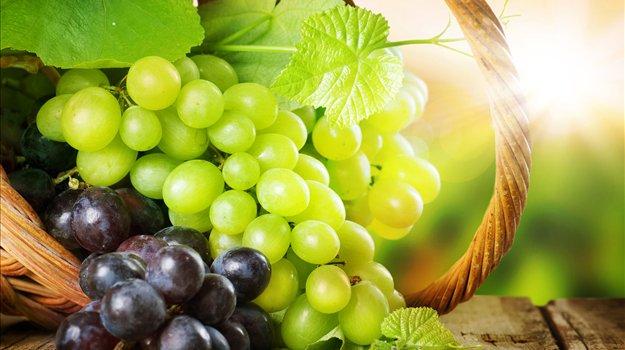 Photo of Трпезно грозје наместо на трпезите, ќе заврши во казаните за ракија