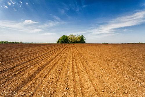 Photo of Гарантниот фонд со 28 милиони евра гарантира за кредити за земјоделците