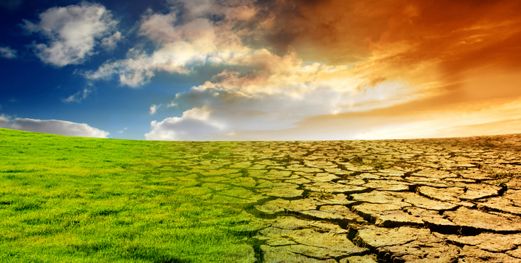 Photo of Климатските промени закана за земјоделското производство