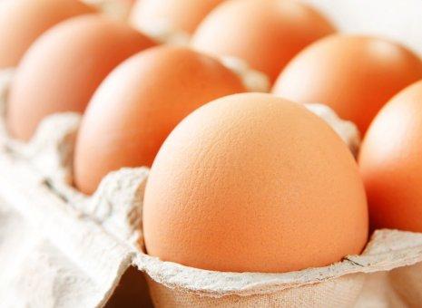 Photo of Македонија не увезува јајца од Полска