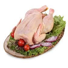 zabrana za uvoz na ptici i zhivinsko meso i od regioni na hrvatska