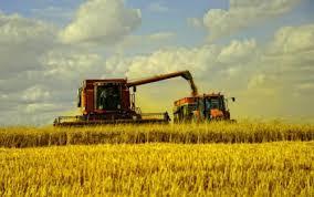 Photo of Задругарството им ги намалува трошоците на земјоделците