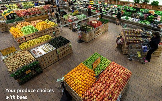 Агроберзата ќе ја подобри трговијата и ќе овозможи фер откупни цени
