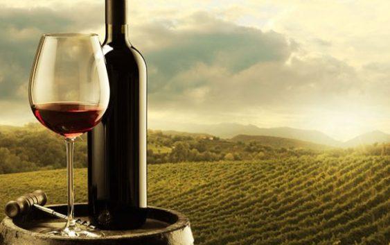 """Фондација """"Тиквешки вински пат"""" – една деценија почит кон виното и развивање на винската култура"""