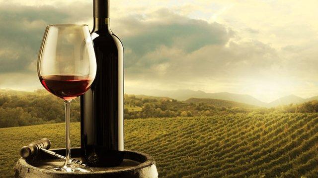 """Photo of Фондација """"Тиквешки вински пат"""" – една деценија почит кон виното и развивање на винската култура"""