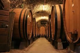 Photo of Казни за винарниците кои не ги почитуваат роковите за исплата на откупеното грозје