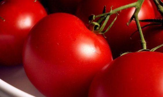 """Наместо вкусен домашен """"јабучар"""" ќе јадеме пластични домати"""