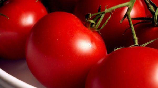 """Photo of Наместо вкусен домашен """"јабучар"""" ќе јадеме пластични домати"""