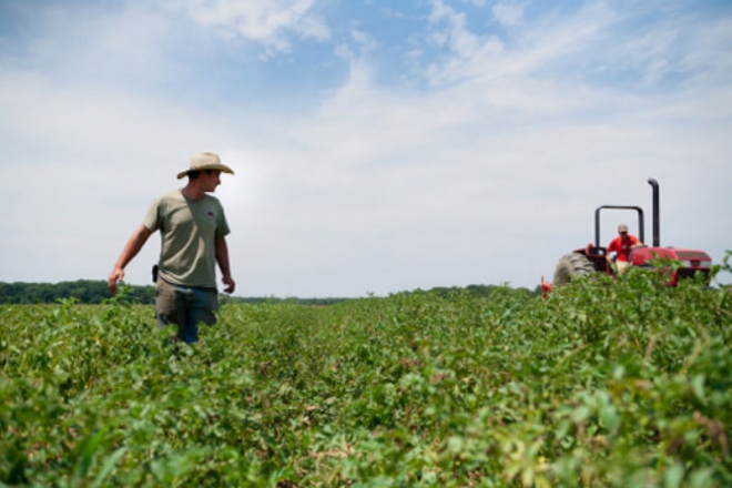 Photo of УЈП: Земјоделците да поднесат барање за паушално оданочување