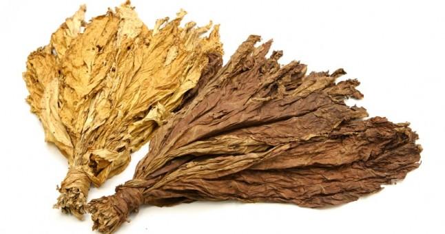 Photo of Во Василево откупени 150 тони тутун, просечната цена 210 денари