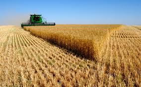 Photo of За рурален развој 33 милиони евра