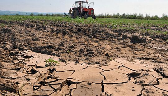 Photo of Над 170 илјади земјоделски стопанства во Македонија