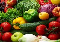 Органското земјоделско производство, приоритет на семејните фарми