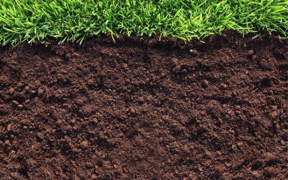 Основна обработка на почвата