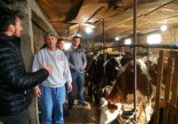 Припремање на силажа и исхрана на добитокот во зимскиот период- практична обука со сточари од прилепскиот и битолскиот регион