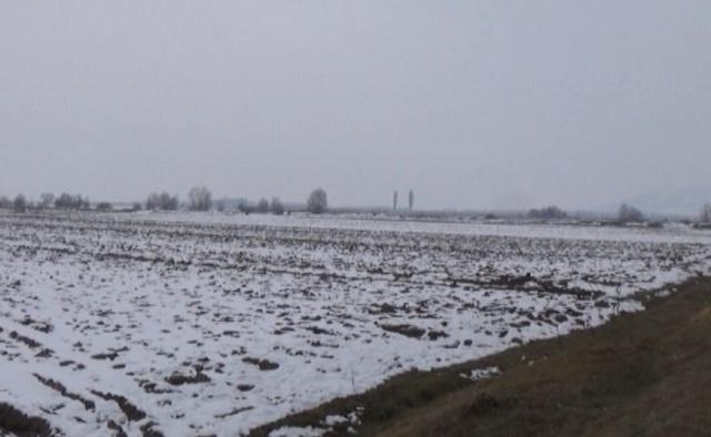 Photo of Снегот ги штити посевите