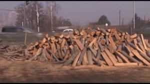 Photo of Тендер за купување дрва