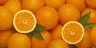 Photo of Тунис очајнички бара купувачи за своите портокали