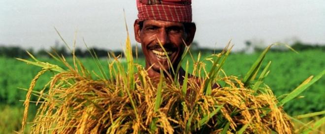 Photo of Бангладеш го отвори првиот склад за храна што добива струја од сонцето