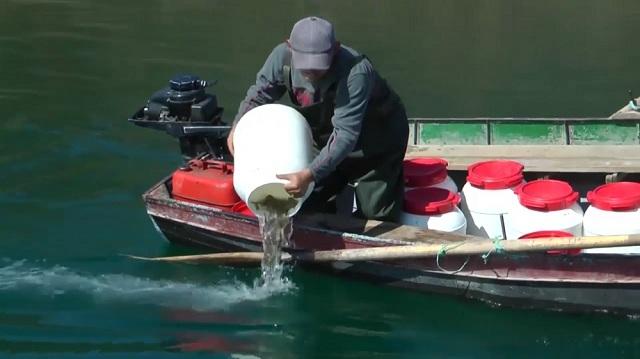 Photo of 1,5 милиони евра субвенции за рибарство