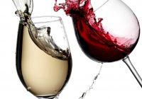 ХРВАТСКА – МАКЕДОНИЈА: Во виното е вистината, ама тука некој лаже!