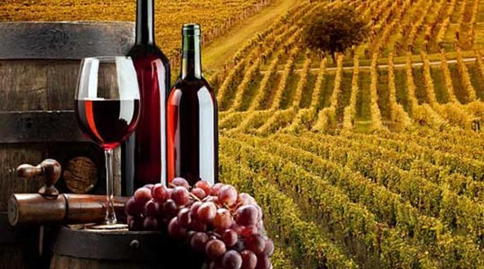 """Photo of """"Недела на виното"""" во Неготино"""