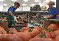 Финансирање на земјоделски компании од ИПАРД 2
