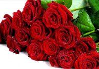 Македонците лани за рози потрошиле околу 500.000 евра
