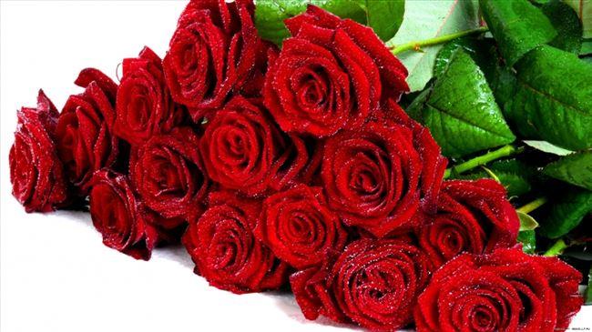 Photo of Македонците лани за рози потрошиле околу 500.000 евра