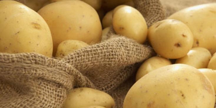 Photo of ЗГОЛЕМУВАЊЕ: Ова се цените во земјоделството во февруари