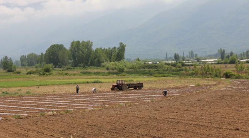 Photo of Почна пролетната сеидба во Дебарско
