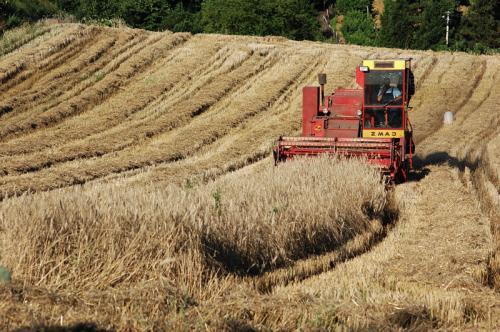 Photo of СУБВЕНЦИИ: Земјоделците оставени ни на небо, ни на земја!
