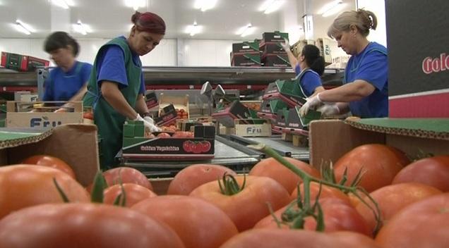 Photo of Земјоделско- прехранбен сектор: Извозот лани зголемен за 9%