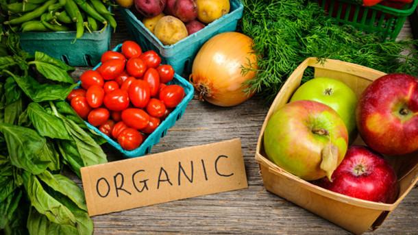 Photo of ЕК: До 2030 година 25 отсто од земјоделството да биде органско