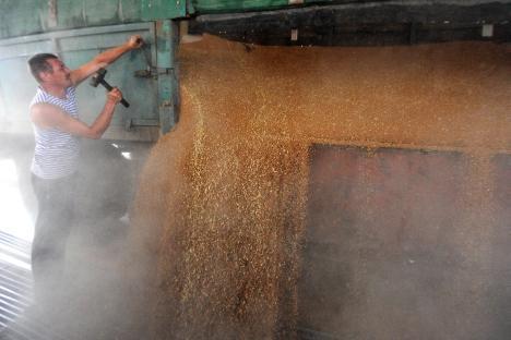 """Photo of """"Лез Еко"""": санкциите на Западот направија од Русија земјоделска суперсила"""