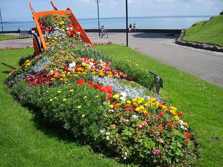 """Photo of """"Истурени"""" цвеќиња внесуваат живописност во обичните градини"""