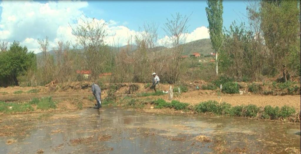 Photo of Климатските промени го намалија земјоделскoто производство