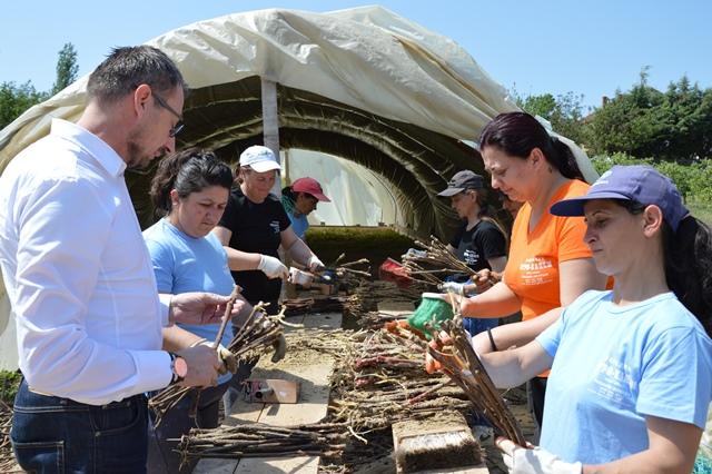 Photo of Жени – фармери практично обучени за пренос на лозови садници од стратификала на поле
