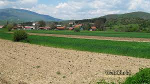 Photo of Градот ги уништи земјоделските насади во кумановскo, земјоделците се жалат, штетата не е проценета
