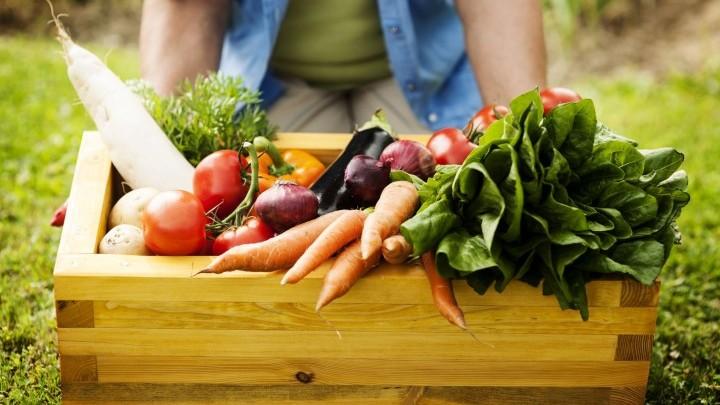 Photo of Слаб интерес за органско производство, расте свеста за здрава храна