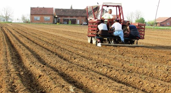 Photo of Временските услови голем непријател на земјоделците