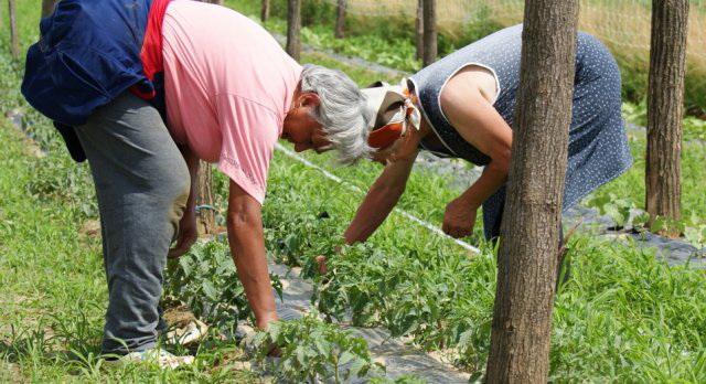 Photo of Субвенциска игра на нерви со земјоделците