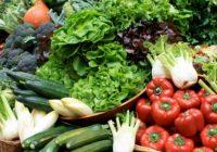 Ако се остварат прогнозите за суша тоа ќе влијае и на квалитетот и на цената на земјоделските производи