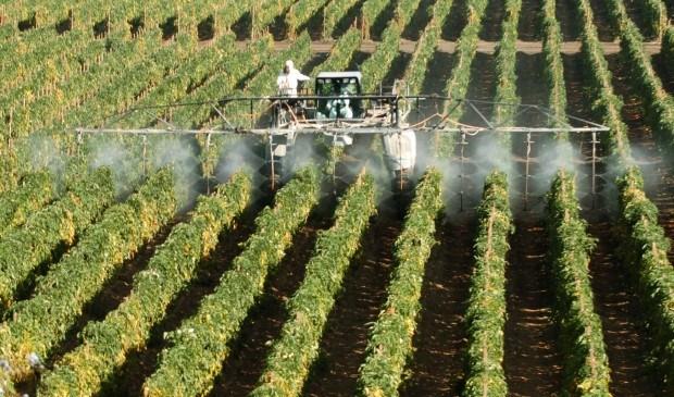 Photo of Земјоделците бараат помош за субвенциите, регулирање на увозот и откупот