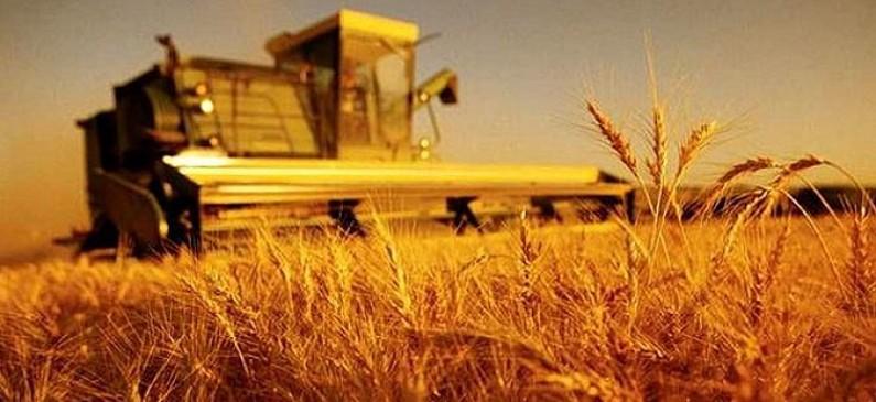 Photo of Потсекторската група ќе работи на уредување на пазарот за жита
