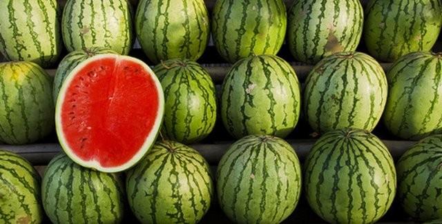 Photo of Се подобрува откупот на лубениците, субвенциите помагаат