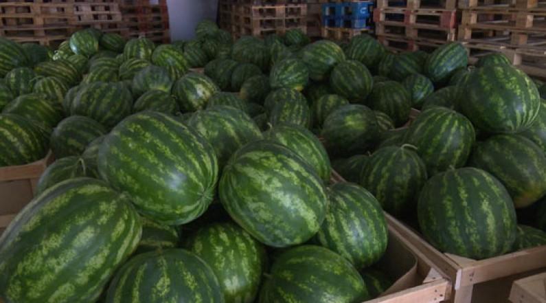 Photo of Трупуновски: Имаме проблем со ниската откупна цена на лубеницата