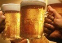 Во Хрватска годишно се произведуваат 3,4 милиони хектолитри пиво