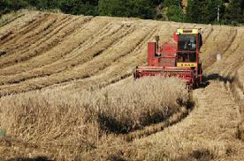 Photo of Нов проект на МЗШВ поддржан од ЕУ, соединување и размена на земјоделските парцели