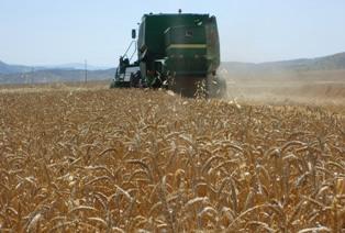 Photo of Струмичките земјоделци денеска блокираа регионален пат